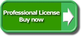 Buy now: professional license